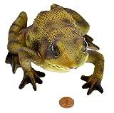 Muwse 1x Deko-Frosch 15x10x8 cm Tier-Figur Sicht geprüft gut verpackt gekennzeichnet. witterungsbeständig Garten Skulptur