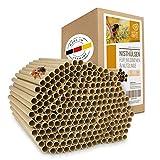wildtier herz I 200 Bio Nisthülsen für Wildbienen 8 mm I inkl. E-Book von Biologen I aus Deutschland Öko Niströhren aus Gras u. Pappe I Insektenhotel Füllmaterial I Nisthilfe für Bienen