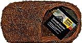 Simon King Rotkehlchen-Nest, gebürstetes Holz, braun